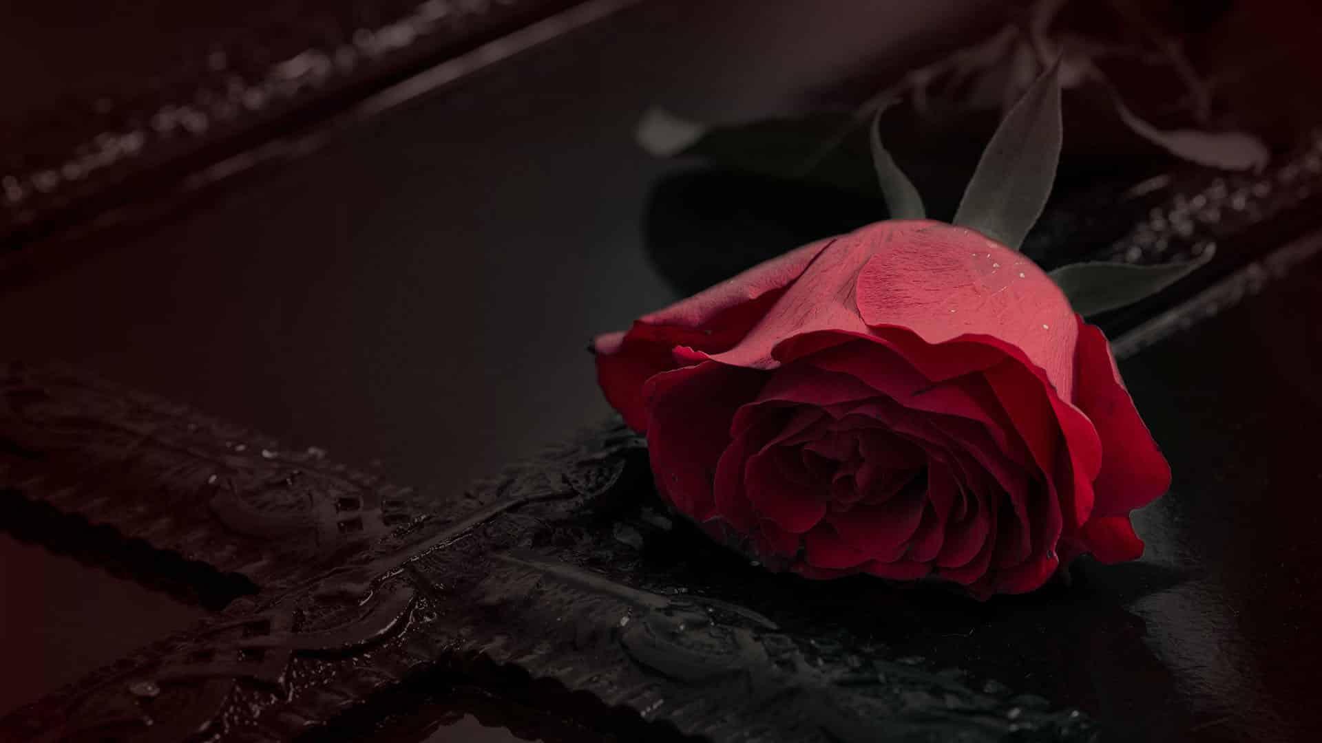 Onoranze funebri Meneghini Arsiero